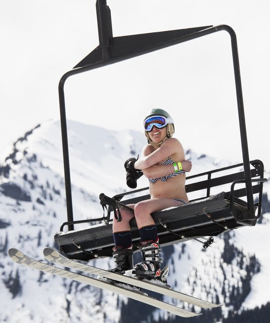 A skier braves the cold while riding a chairlift during the Bikini & Board Shorts Downhill at Crystal Mountain, a ski resort near Enumclaw, Washington April 19, 2014. Skiers and snowboarders competed for a chance to win one of four season's passes. (Photo by David Ryder/Reuters)