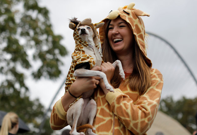 Marcie Walker holds dog Nana while both are dressed as giraffes at the Tompkins Square Halloween Dog Parade in Manhattan, New York City, U.S., October 20, 2019. (Photo by Andrew Kelly/Reuters)