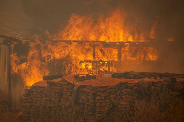 Fire consumes an outbuilding near a home during the Twisp River fire near Twisp, Washington August 20, 2015. (Photo by David Ryder/Reuters)