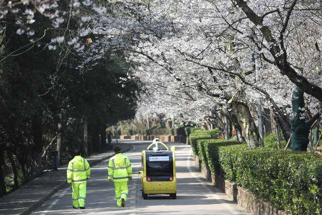 Security personnel walk next to a 5G enabled autonomous vehicle, installed with a camera filming blooming cherry blossoms for an online live-streaming session, inside the closed Wuhan University, in China on March 17, 2020. (Photo by Reuters/China Daily)