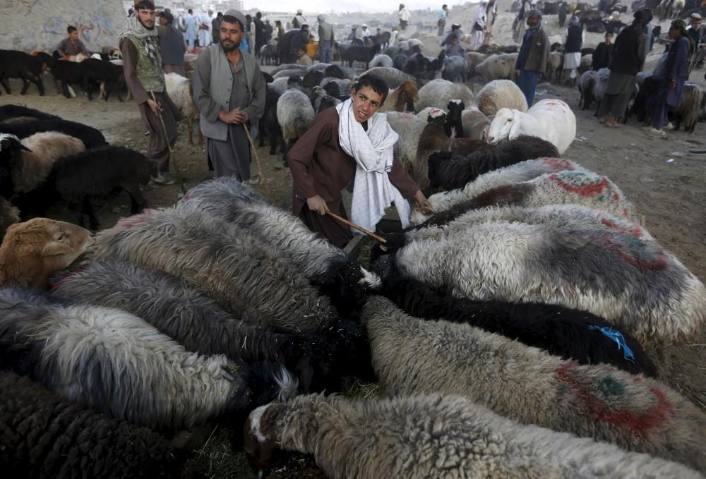 Muslims Across the World are Preparing to Celebrate Eid Al Adha