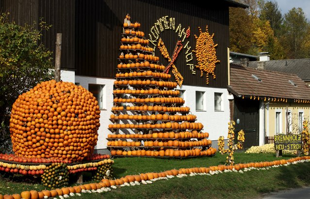 Various kinds of pumpkins, out of some 400 on display grown this season, are seen displayed in front of Franzlbauer farm in Hintersdorf, Austria, October 27, 2015. (Photo by Heinz-Peter Bader/Reuters)