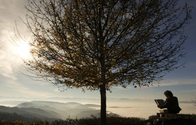 A man reads a newspaper under a tree during sunny autumn weather on a look-out on Mount Uetliberg (871 metres/2850 ft) in Zurich November 22, 2014. (Photo by Arnd Wiegmann/Reuters)