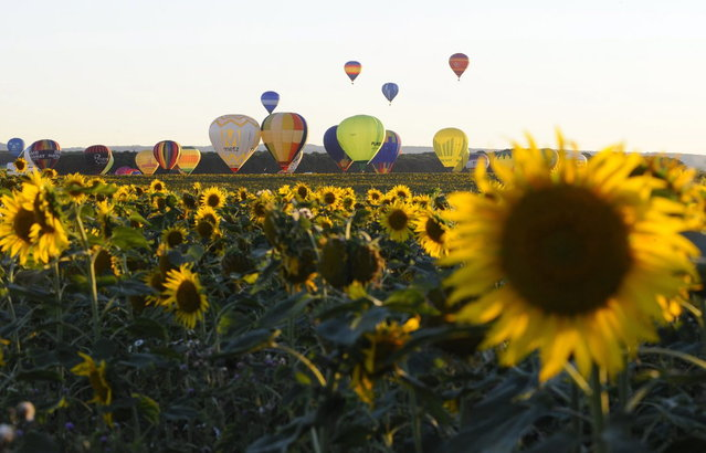 "Hot-air balloons rise over a field of sunflowers as they fly over Chambley-Bussieres, eastern France, on July 31, 2013, to try to set a world record with 408 balloons in the sky, as part of the yearly event ""Lorraine Mondial Air Ballons"", an international air-balloon meeting. (Photo by Jean-Christophe Verhaegen/AFP Photo)"