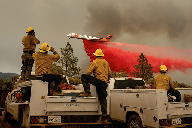 Firefighters watch as an air tanker drops retardant while battling the Ferguson fire in the Stanislaus National Forest, near Yosemite National Park, California on July 21, 2018. A fire that claimed the life of one firefighter and injured two others near California's Yosemite national park has almost doubled in size in three days, authorities said Friday. The US Department of Agriculture (USDA) said the so-called Ferguson fire had spread to an area of 22,892 acres (92.6 square kilometers), and is so far only 7 percent contained. (Photo by Noah Berger/AFP Photo)