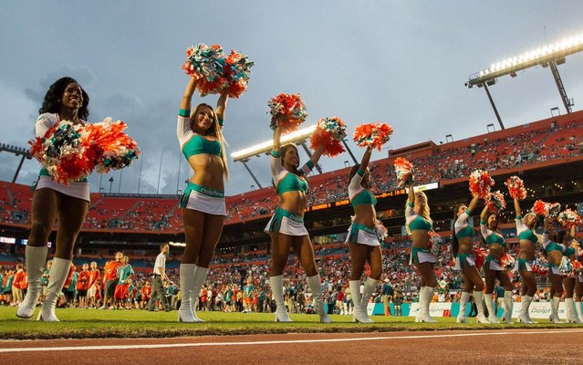Miami Dolphins cheerleaders perform during a preseason game against Tampa Bay at Sun Life Stadium in Miami Gardens. (Photo by Allen Eyestone/The Palm Beach Post)