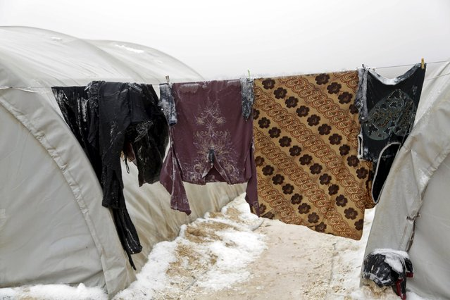 Clothes covered partially in snow are seen hung to dry outside tents housing internally displaced people, during the cold weather in Jerjnaz camp, in Idlib province, Syria, January 5, 2016. (Photo by Khalil Ashawi/Reuters)
