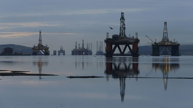 Drilling rigs are parked up in the Cromarty Firth near Invergordon, Scotland, Britain January 27, 2015. Falling prices have reduced demand for drilling work in the North Sea and has led to the laying up of the rigs. (Photo by Russell Cheyne/Reuters)