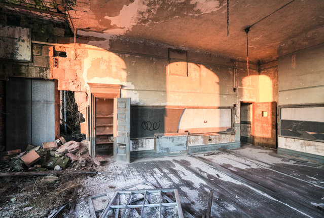 Dawn breaks in a crumbling classroom of P.S. 186 in Harlem.  After forty years of neglect, saplings sprout from the upper floors of the school. (Photo by Will Ellis)