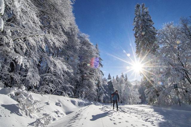 A cross-country skier makes his way through the fresh powder near Neuschoenau, Germany, Tuesday, December 18, 2018. (Photo by Armin Weigel/DPA via AP Photo)