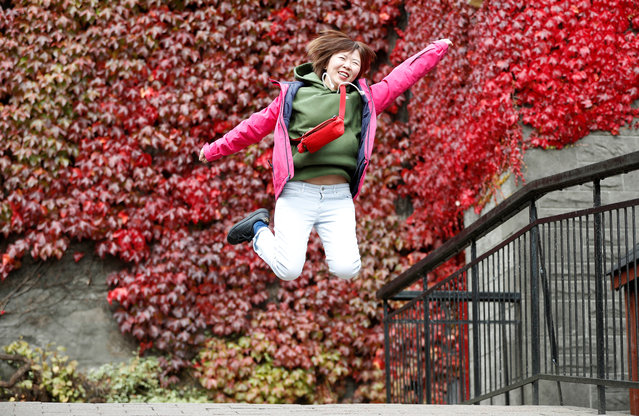 A tourist poses for a souvenir snap in front of autumn foliage in Pitlochry, Scotland, Britain September 28, 2018. (Photo by Russell Cheyne/Reuters)