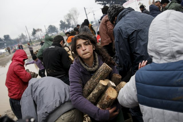A girl carries logs from a shipment of firewood at a makeshift camp for refugees and migrants at the Greek-Macedonian border, near the village of Idomeni, Greece March 15, 2016. (Photo by Alkis Konstantinidis/Reuters)