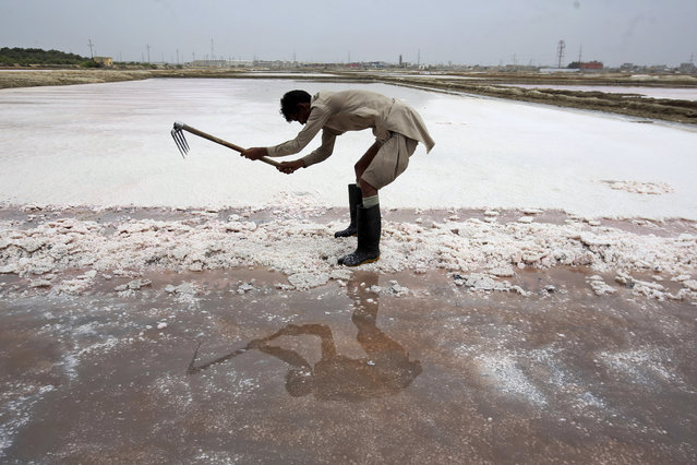 Laborer Abdul Sattar, 45, of Pakistan, collects sea salt, Monday, July 1, 2019, at a coastal area of Karachi, Pakistan. Sattar earns on average 800 Pakistani rupees (US$ 5) per day for his work. (Photo by Fareed Khan/AP Photo)