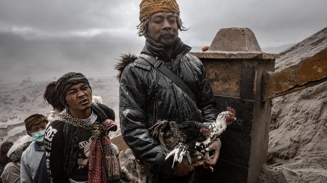 Tenggerese carries chickens as offerings during the Yadnya Kasada Festival at crater of Mount Bromo on July 18, 2019 in Probolinggo, Java, Indonesia. Tenggerese people are a Javanese ethnic group in Eastern Java who claimed to be the descendants of the Majapahit princes. (Photo by Ulet Ifansasti/Getty Images)