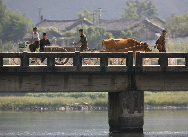 A North Korean man leads his cow pulling a cart as others ride their bikes over a bridge along the banks of the Yalu River near the North Korean town of Qing Cheng September 12, 2008. (Photo by David Gray/Reuters)