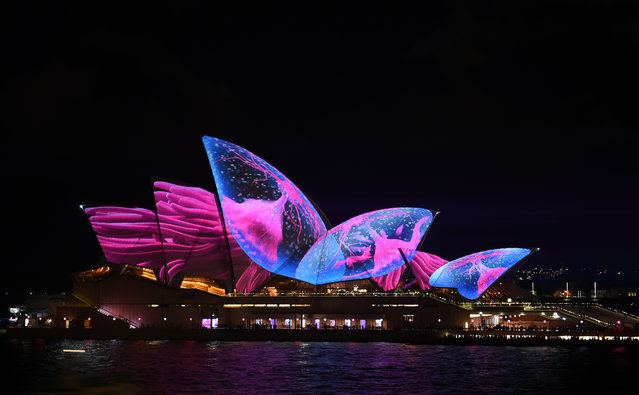 """A light show called """"Vivid"""" changes the appearance of the Sydney Opera House in Sydney on May 26, 2017. """"Vivid"""" is a major outdoor cultural event featuring light installations and projections with the annual event this year running from May 26th — June 19, 2017. (Photo by Saeed Khan/AFP Photo)"""