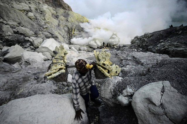This picture taken on June 15, 2016 shows an Indonesian miner carrying baskets of solid sulphur from the quarry in Kawah Ijen, an active volcano in remote Indonesia Banyuwangi regency in East Java. Hot sulphuric gases – escaping at high pressure through cracks in this legendary mountain – ignite upon contact with air, burning a fantastic, iridescent blue. By day, traditional miners brave the highly toxic gases to extract huge chunks of sulphur from the shores of a large turquoise lake within the crater. (Photo by Goh Chai Hin/AFP Photo)