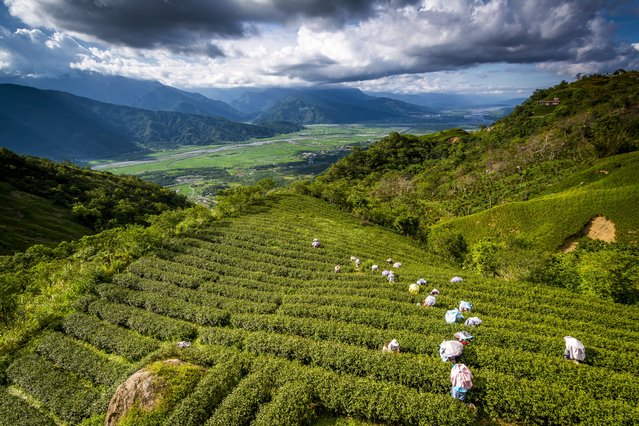 """""""East Rift Valley Fenglin"""". Standing on Liushishi Mountain see the Humanities views of East Rift Valley Fenglin. Photo location: Taiwan. (Photo and caption by 峻彰 許/National Geographic Photo Contest)"""