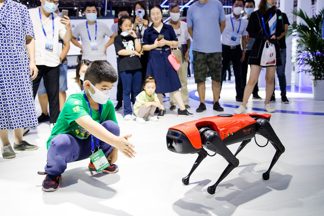 A child inteacts with Alpha Dog walking robot during the 16th China (Nanjing) International Software Product and Information Service Trade Fair at the Nanjing International Expo Center on September 6, 2020 in Nanjing, Jiangsu Province of China. (Photo by Liu Song/VCG via Getty Images)