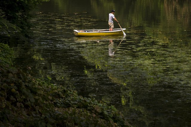 A man paddles a boat in a canal on a hot summer day in Tokyo August 18, 2015. (Photo by Thomas Peter/Reuters)