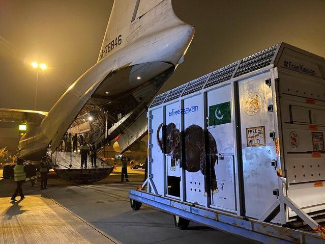 A crate carrying Kaavan, an elephant to be transported to a sanctuary in Cambodia, is seen at the Islamabad International Airport in Islamabad, Pakistan on November 30, 2020. (Photo by Saiyna Bashir/Reuters)