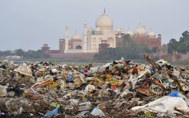 In this Friday, May 11, 2018 photo, garbage covers the area by the Yamuna river near the Taj Mahal in Agra, India. Built by Mogul Emperor Shah Jahan for his favorite wife in the north Indian city of Agra, the Taj Mahal has been losing its sheen for years. The shining white monument to love is turning a little green and yellow because of air pollution and swarms of insects. (Photo by Pawan Sharma/AP Photo)
