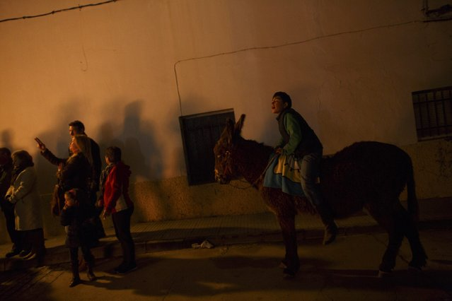 "A boy calls out to a friend while riding a donkey during the ""Luminarias"" annual religious celebration on the eve of Saint Anthony's Day in the village of Alosno, southwest Spain, January 16, 2015. (Photo by Marcelo del Pozo/Reuters)"