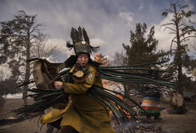 A Mongolian Shaman or Buu, takes part in a fire ritual meant to summon spirits at the Mother Tree on April 05, 2018 in Sukhbaatar, Selenge Province, Mongolia. (Photo by Kevin Frayer/Getty Images)