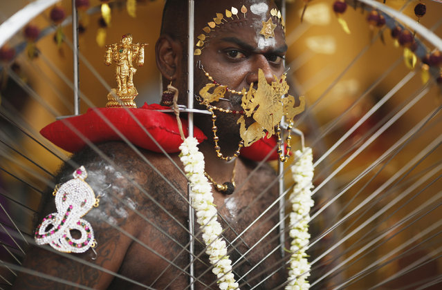 A devotee carrying his kavadi waits to start his procession during Thaipusam festival in Singapore February 3, 2015. (Photo by Edgar Su/Reuters)