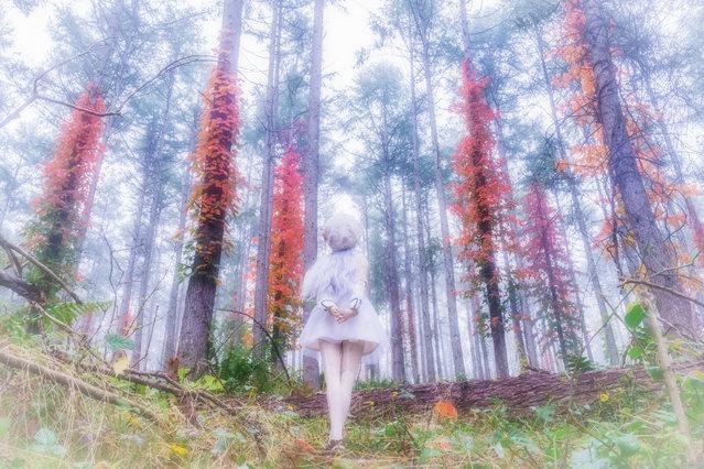 """""""Like a Fire"""". Location: Tateshina, Japan. (Photo and caption by AZURE)"""