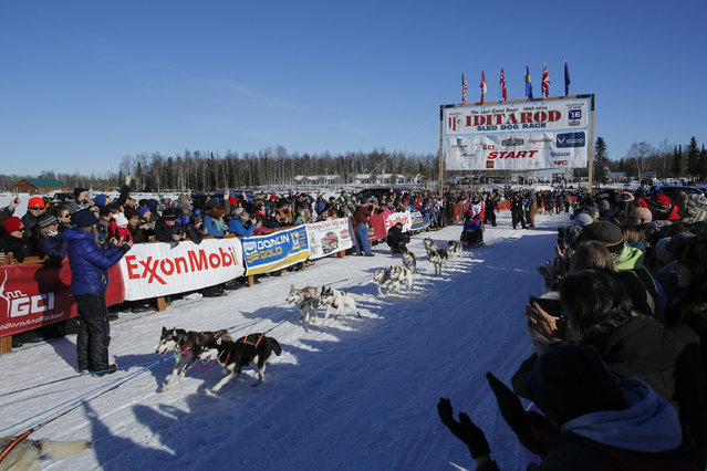 Lisbet Norris and her team leave the start chute at the restart of the Iditarod Trail Sled Dog Race  in Willow, Alaska March 6, 2016. (Photo by Nathaniel Wilder/Reuters)