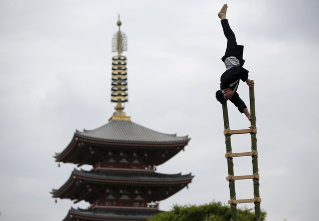 Men wearing costume of traditional firefighters perform  acrobatic stunts atop a bamboo ladder following a memorial service for firefighters at Sensoji temple in Tokyo's downtown of Asakusa May 25, 2015. (Photo by Issei Kato/Reuters)