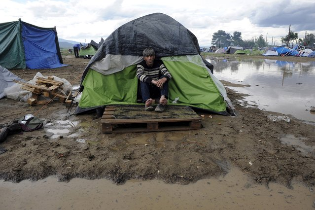 A refugee sits at the entrance of his tent following heavy rainfall at a makeshift camp for migrants and refugees at the Greek-Macedonian border near the village of Idomeni, Greece, April 24, 2016. (Photo by Alexandros Avramidis/Reuters)