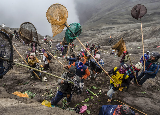 People try to catch offerings thrown off the summit of Mount Bromo volcano by Tengger tribe members and local tourists in Probolinggo, East Java province on July 18, 2019, as part of the Yadnya Kasada Festival. During the annual Yadnya Kasada festival, the Tenggerese climb Mount Bromo, an active volcano, and seek the blessing from the main deity by presenting offerings of rice, fruit, livestock and other items. (Photo by Juni Kriswanto/AFP Photo)