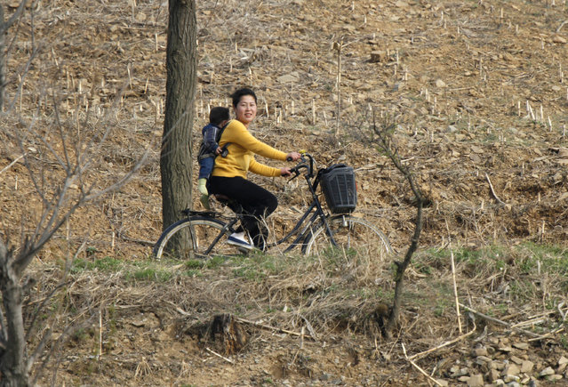 A North Korean woman rides a bicycle with her child on her back, on the banks of Yalu River near the Chongsong county of North Korea, opposite the Chinese border city of Dandong, May 8, 2011. (Photo by Jacky Chen/Reuters)