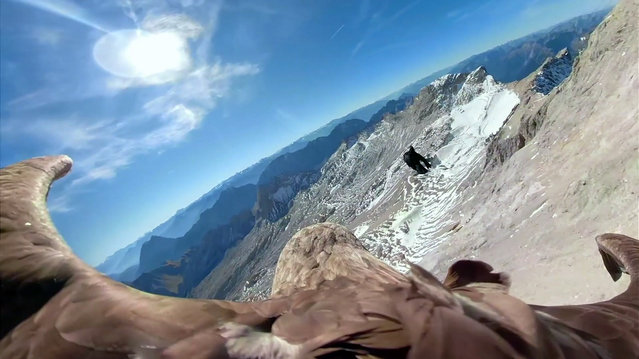 In this image made from video provided by Eagle Wings Foundation/Chopard, aerial footage shot by a camera attached to an eagle of a glacier in Western Europe. A white-tailed eagle is filming as he flies over the Alps and its once-magnificent glaciers, which are now crumbling because of global warming. The eagle named Victor will embark upon a series of flights in the first week on October 2019, filming as he soars over the Alps. Organizers hope that his spectacular eagle's-view footage will help jolt the world out of its climate-change apathy and toward swifter action to combat its effects. (Photo by Eagle Wings Foundation/Chopard via AP Photo)
