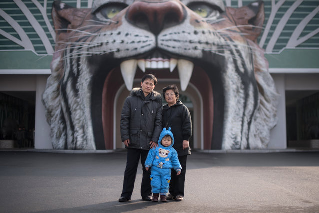 In this photo taken on November 27, 2016, toddler Mun Ji-Song (Moon Ji-sung) (C) poses for a photo with his parents at the entrance to the Central Zoo in Pyongyang. (Photo by Ed Jones/AFP Photo)