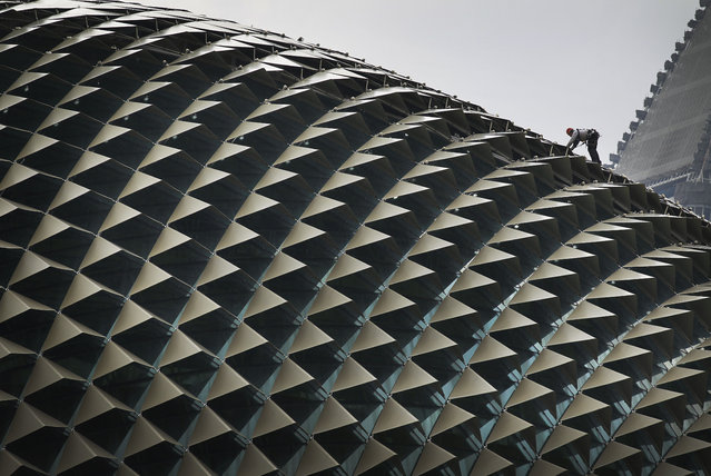 A worker perched on the roof of the Esplanade Theatre carries out the routine cleaning Wednesday, April 11, 2012 in Singapore. (Photo by Wong Maye-E/AP Photo)