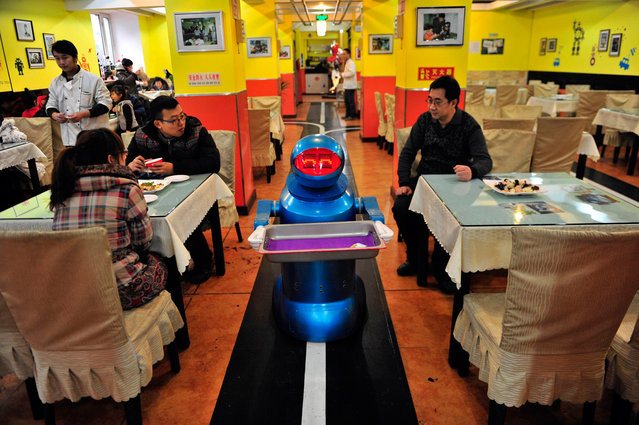 A robot that specialises in delivering food holds an empty plate after serving meals to customers at a Robot Restaurant in Harbin, Heilongjiang province January 12, 2013. Opened in June 2012, the restaurant has gained fame in using a total of 20 robots, which range in heights of 1.3 – 1.6 metres, to cook meals and deliver dishes. The robots can work continuously for five hours after a two-hour charge, and are able to display over 10 expressions on their faces and say basic welcoming sentences to customers, local media reported. (Photo by Sheng Li/Reuters)