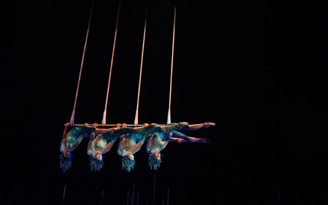 Artists perform during Cirque du Soleil's Varekai show in Bogota, Colombia, on March 21, 2013. (Photo by John Vizcaino/Reuters)