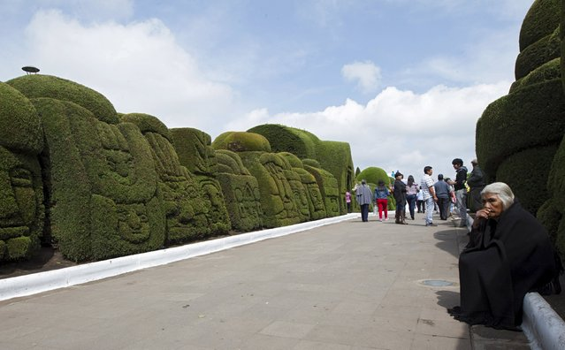 A woman rests on the side of a path at a cemetery known for its topiary art, during the observance of the Day of the Dead, in Tulcan, Ecuador November 2, 2015. (Photo by Guillermo Granja/Reuters)