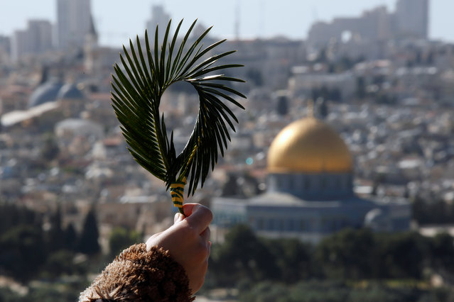 A Catholic faithful holds palm fronds during a Palm Sunday procession on the Mount of Olives in Jerusalem, March 25, 2018. (Photo by Amir Cohen/Reuters)