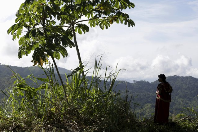 A Ngabe indigenous woman looks at the mountains in Hato Chami in the Ngabe-Bugle Region, Panama  August 28, 2015. (Photo by Carlos Jasso/Reuters)