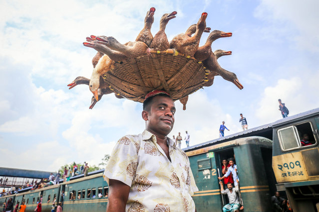A duck salesman parades his stock to commuters at a busy station in Dhaka, Bangladesh on May 23, 2018. (Photo by Nazmul Hasan Khan/Caters News Agency)