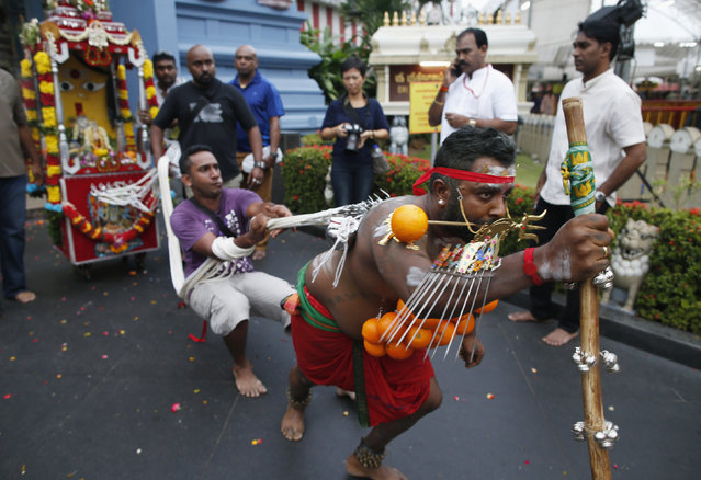 A devotee leaves a temple pulling a chariot during Thaipusam festival in Singapore February 3, 2015. (Photo by Edgar Su/Reuters)