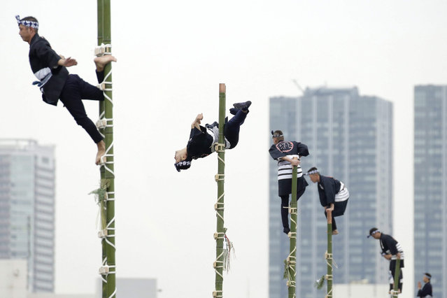 Members of the Edo Firemanship Preservation Association balance on top of bamboo ladders during a demonstration at the New Year's fire review held by the Tokyo Fire Department in Tokyo, Japan, 06 January 2016. Some 2,800 firefighters perform various emergency rescue and firefighting demonstrations in an effort to promote the prevention of fire and disaster in the annual event. (Photo by Kiyoshi Ota/EPA)