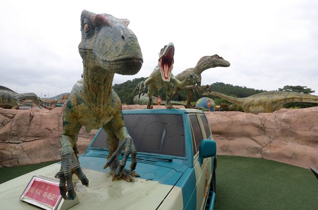 Dinosaur mockups are installed in Danghangpo, Goseong, some 466km southeast of Seoul, South Korea, 06 September 2021, 25 days ahead of the Gyeongnam Goseong Dinosaur World Expo 2021 set for 01 October until 07 November. Goseong is one of the world's three largest fossilized dinosaur footprint sites, along with Colorado in the United States and the west coast of Argentina. (Photo by Yonhap/EPA/EFE)