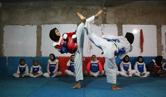 Afghan girls practice Taekwon-do during a martial arts class in Herat, Afghanistan, 06 March 2019. For nearly two decades during the Taliban rule in Afghanistan sports and games including boxing, soccer, volleyball, kite flying, and chess had been banned as immoral and unlawful. During the Taliban regime it was forbidden for women to participate in such sports and games. The Taliban's Islamist regime was toppled by a US-led campaign in late 2001. (Photo by Jalil Rezayee/EPA/EFE)