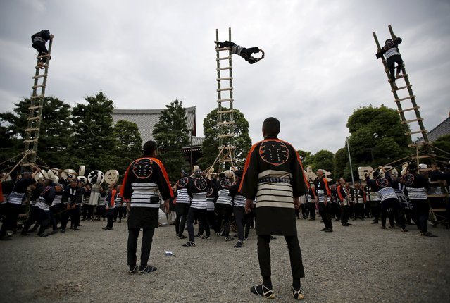 Men wearing costume of traditional firefighters perform acrobatic stunts atop a bamboo ladder following a memorial service for firefighters at Sensoji temple in Tokyo's downtown of Asakusa May 25, 2015. Hundreds of firefighters in traditional costume gathered on Monday for the memorial service for firefighters who were killed performing their duties during the past 300 years. (Photo by Issei Kato/Reuters)