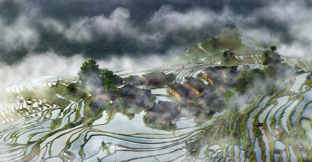 Early morning fog rises across terraces in Guizhou, China. (Photo by Thierry Bornier/2016 National Geographic Travel Photographer of the Year Contest)